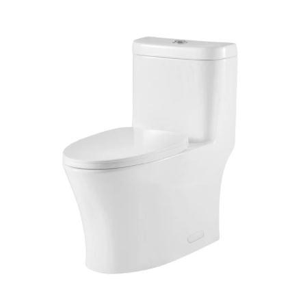 Model #9 ONE PIECE OVAL TOILET WITH SOFT CLOSING SEAT AND DUAL FLUSH HIGH-EFFICIENCY, PORCELAIN, WHITE FINISH, HEIGHT 29-3/4 INCHES (BSN-CL12243)