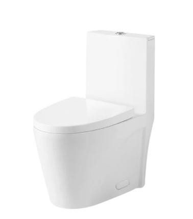 Model #5 ONE PIECE OVAL TOILET WITH SOFT CLOSING SEAT AND DUAL FLUSH HIGH-EFFICIENCY, PORCELAIN, WHITE FINISH, HEIGHT 31 INCHES (BSN-CL12011)