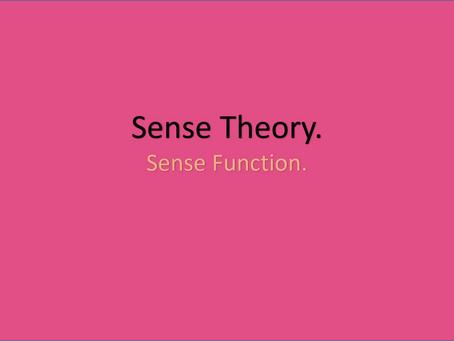 Sense Theory. Sense Function