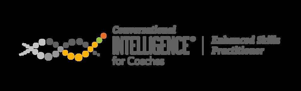 Conversational Intelligence Enhanced Skills Practitioner