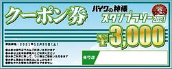 クーポン券_3000円.png