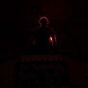animal farm silhouette.png