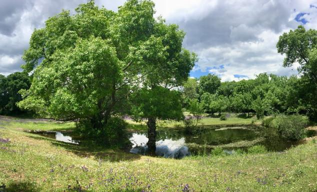 HolaJasmin San Lorenzo de El Escorial Wanderferien und Spanisch Unterricht