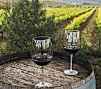 Gastronomía_vino_en_viñedo.jpg