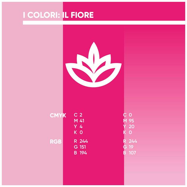 I colori del fiore Parodia