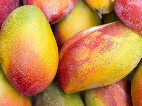 Много интересного о манго!