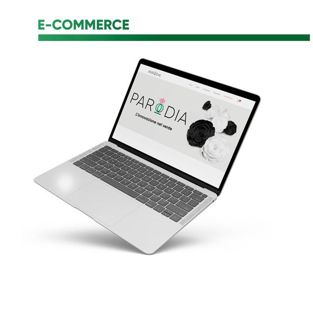 Ecommerce Parodia (2019/2020)