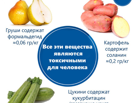Пищевые ингредиенты и стоит ли их бояться