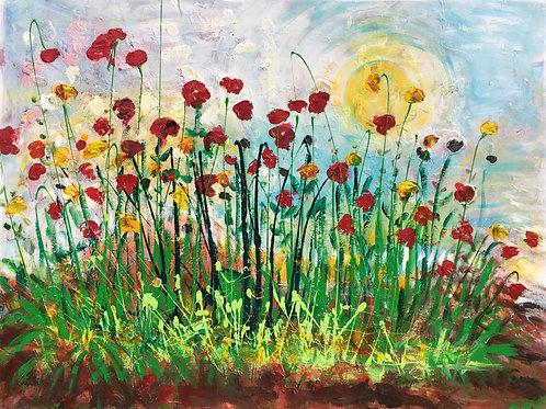 sun field of poppies