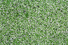 GREEN QUARTZ EPOXY FLOOR.jpg