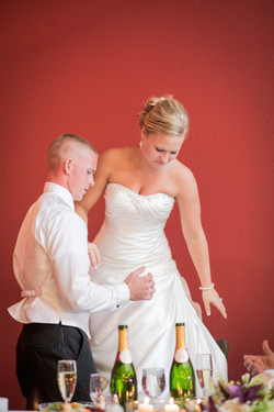 Wedding Photography Janesville