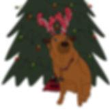 custom commission vector pet portrait digital illustration