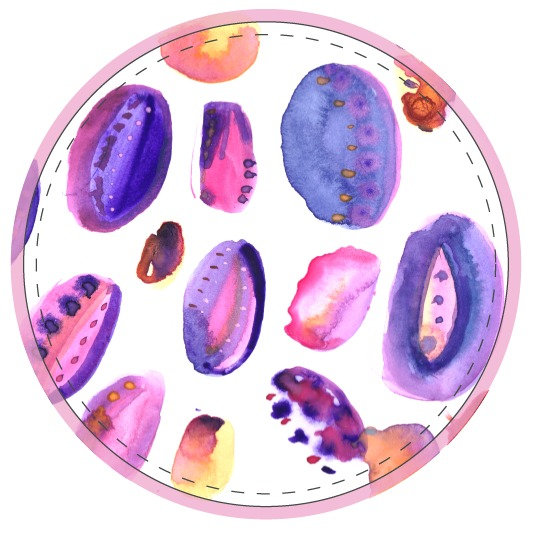 Abalone #1 Sticker