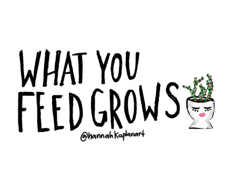 What you feed grows