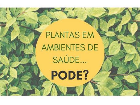 Plantas em ambientes de saúde...pode?