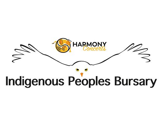 Indigenous bursary-3.png