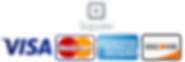 transparent square logo and payment.png