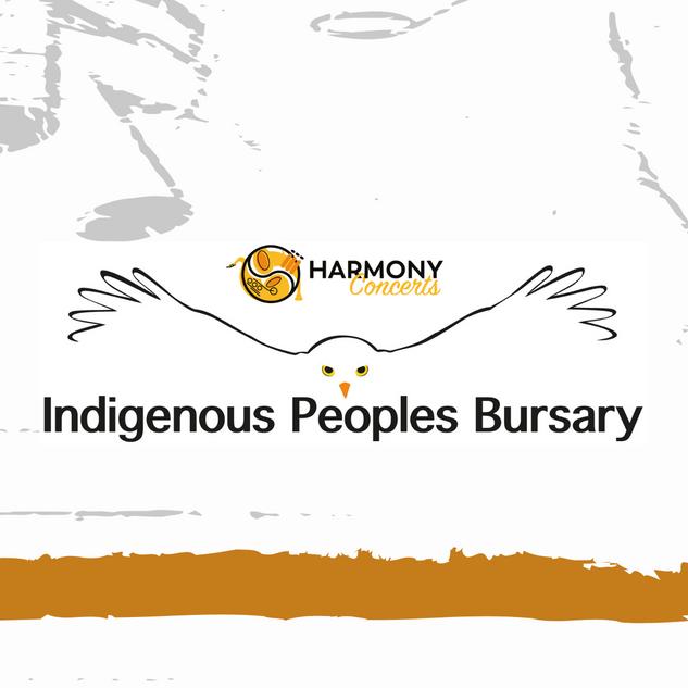 Indigenous Peoples Bursary