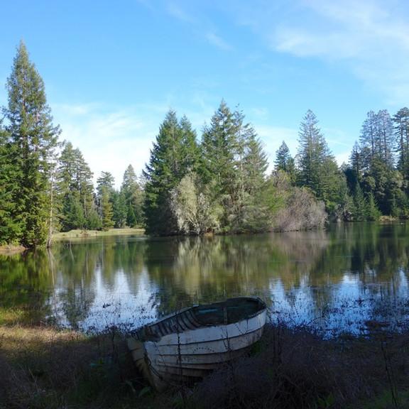 Rips pond.jpg