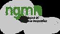 ice-2020-ngmn-logo.png