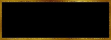 gold logo outline.png