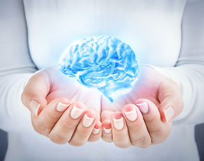 Unternehmensberatung Dr. Rehmer Soziale Neuroleadership