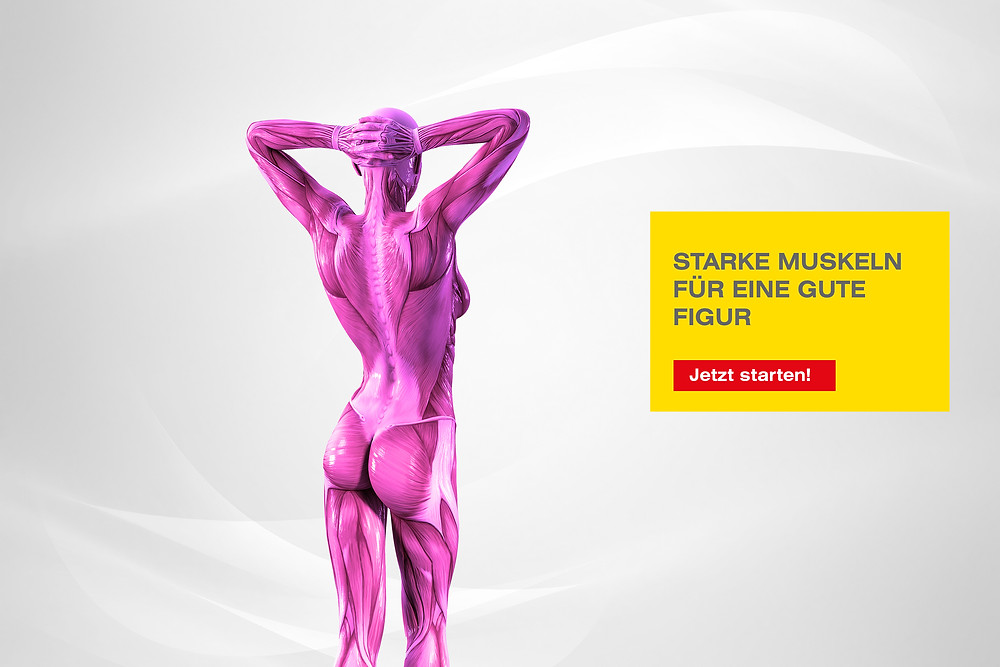 Starke Muskeln für eine gute Figur
