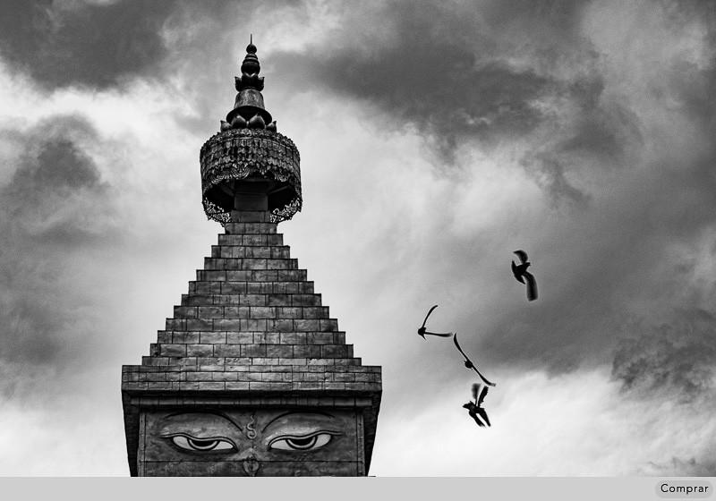 FINE ART PB #043.   Buthan