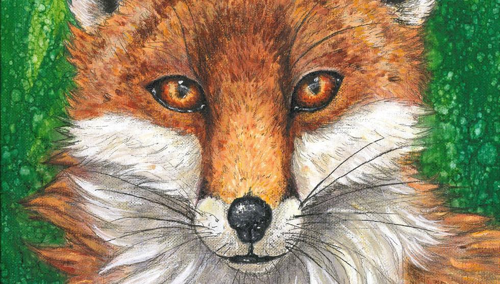 fox_0001.jpg