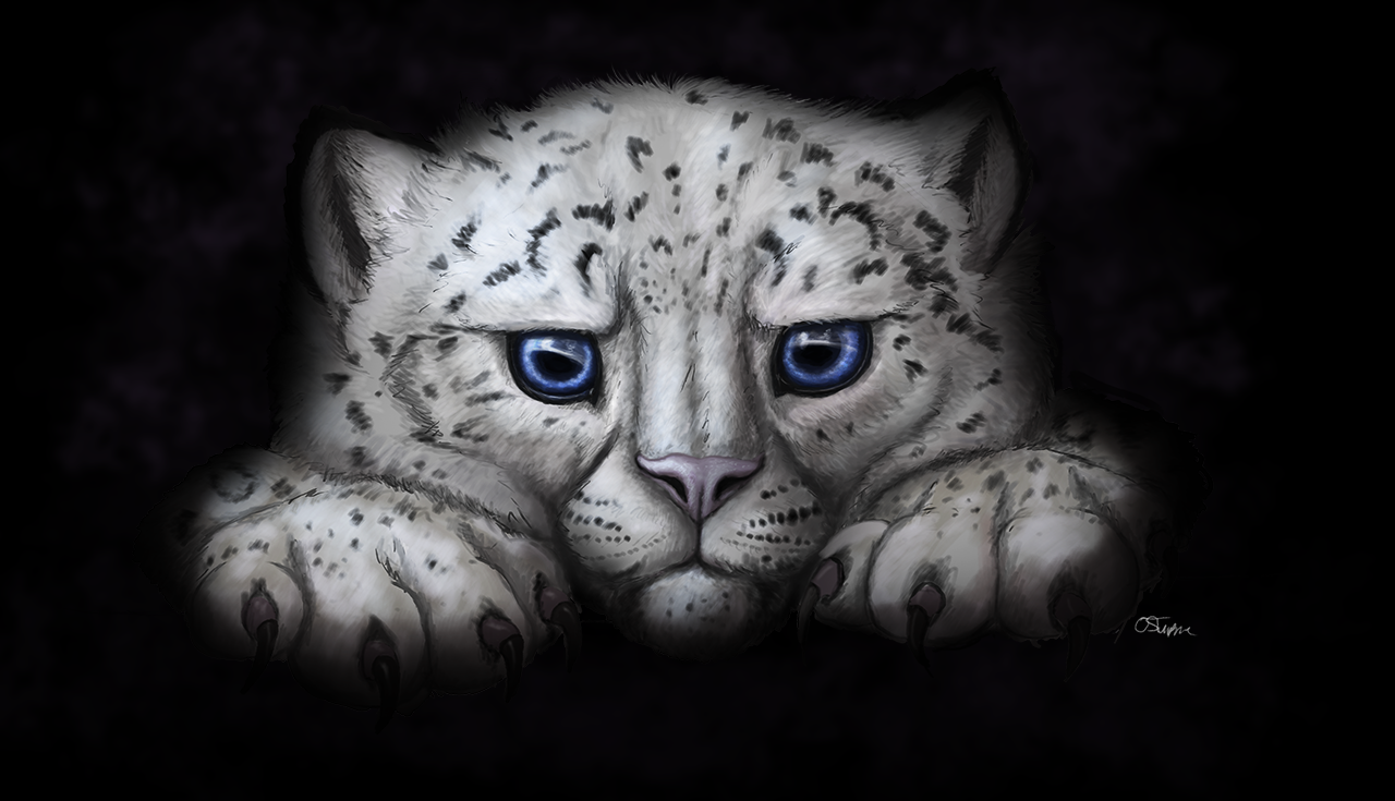 Snowleopardcub.png