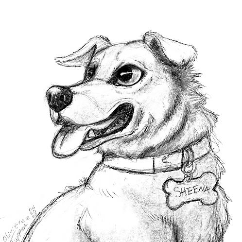 Sketch Portrait (Digital commission)