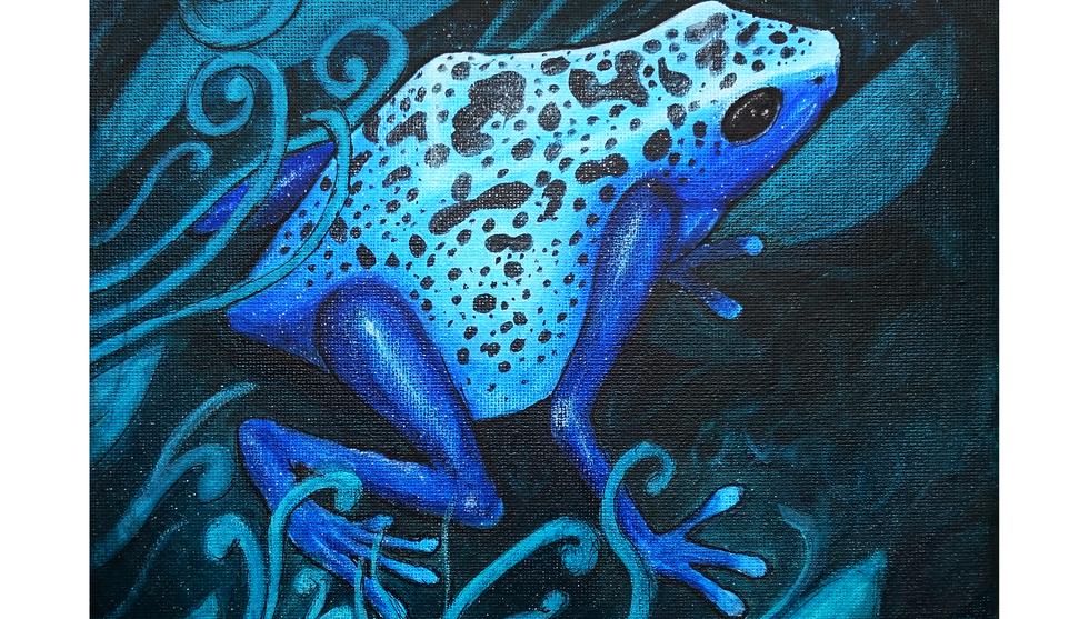 blue dartfrogtrad.png