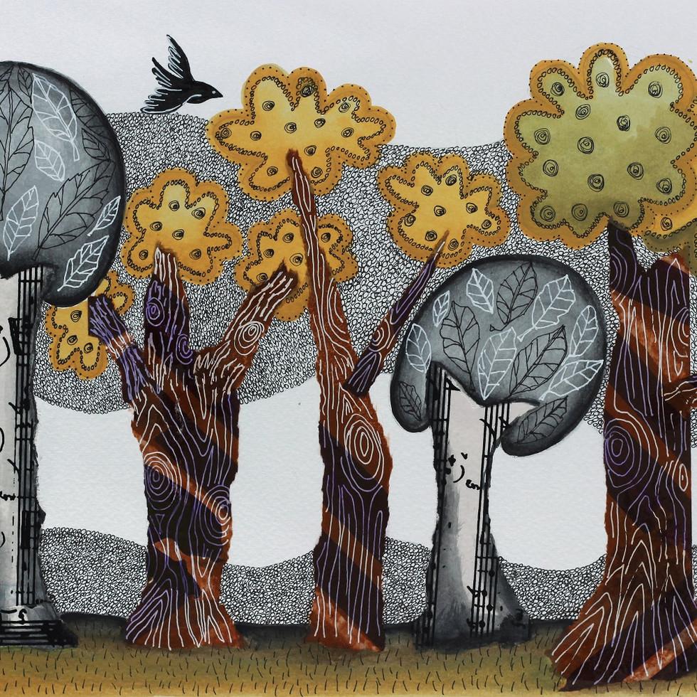 Autumnal grove/ Arboleda otoñal