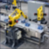 ROBOTICS-CUSTOM-LARGE.jpg