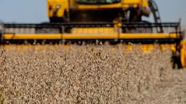 Brasil deve ser o maior exportador de grãos do mundo em cinco anos