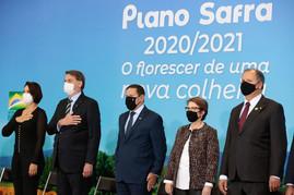 Plano Safra 2020/2021 deve  contar com cerca de R$ 236 bilhões