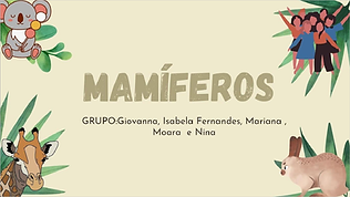 mamíferos.png