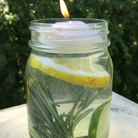 DIY: Outdoor Insect Repellent