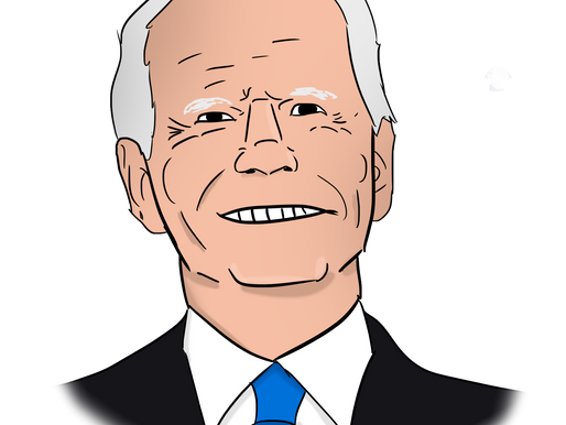 I READ JOE BIDEN'S 100 DAY PLAN SO YOU DON'T HAVE TO