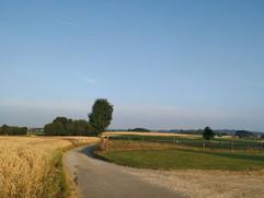Landscape in Pajottenland