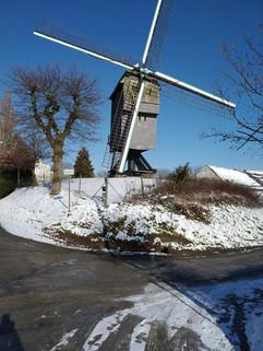 Deer tree mill in the snow.jpg