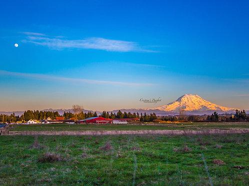 Mt. Rainier Sunset with Moon 11X14 White Mat