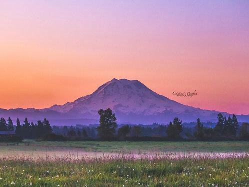 Mt. Rainier Sunrise 11X14 White Mat