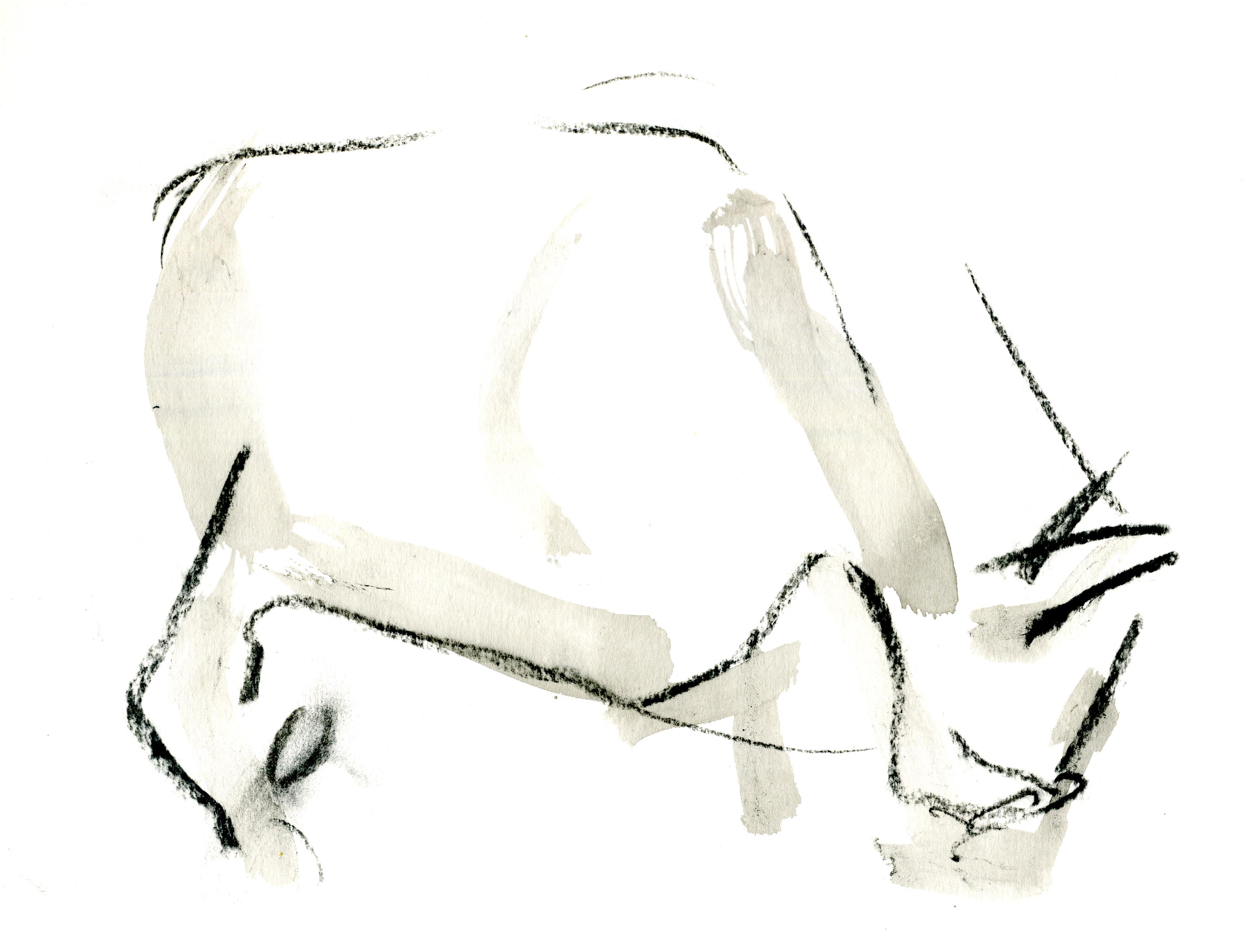 Cow 09