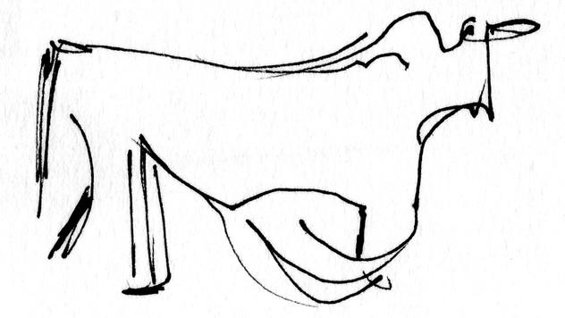 Bull 01