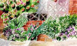 Berkshire garden 1989