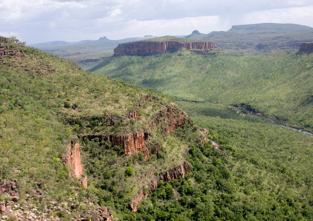 European impacts on 'pristine' Kimberley vegetation