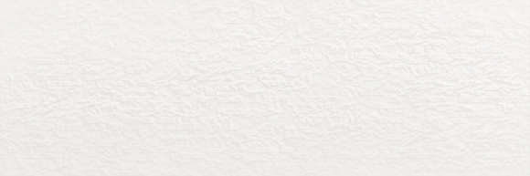 Havana Bianco 40x120cm