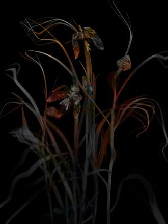 [DE]FLOWERED // Precious #5