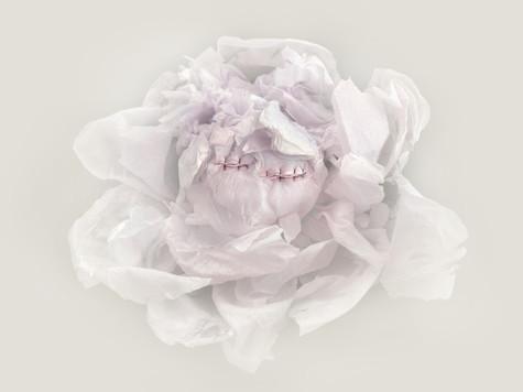 [DE]FLOWERED // Aminata